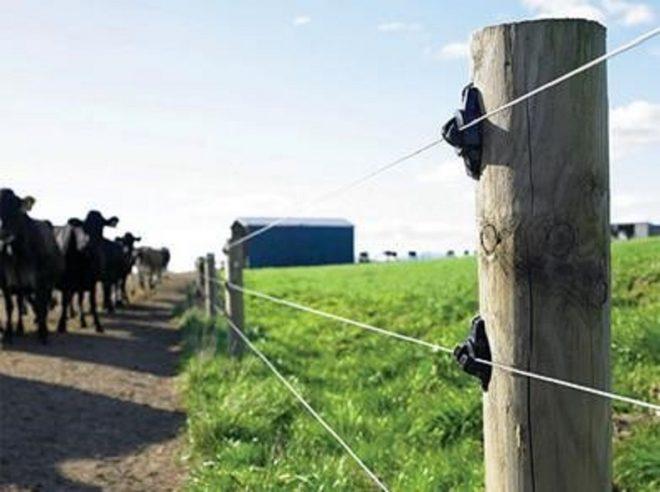 5 sfaturi pe care orice posesor de gard electric ar trebui sa le respecte